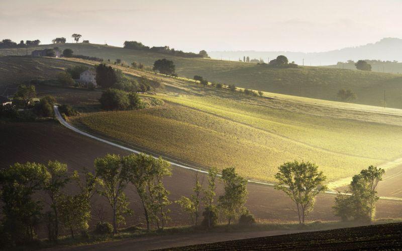 landscape raggi del mattino italian italy farm hill wallpaper