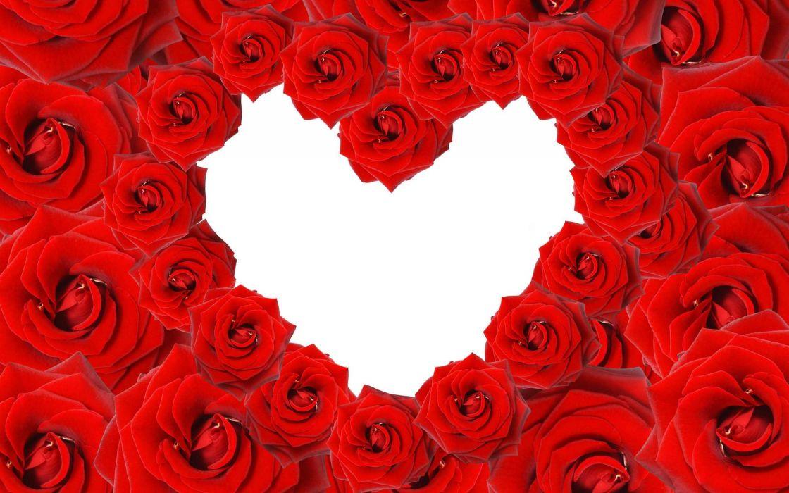 corazon rosas rojas amor wallpaper