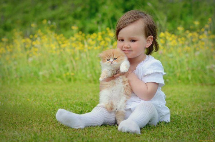 baby girl cute cat kitty wallpaper