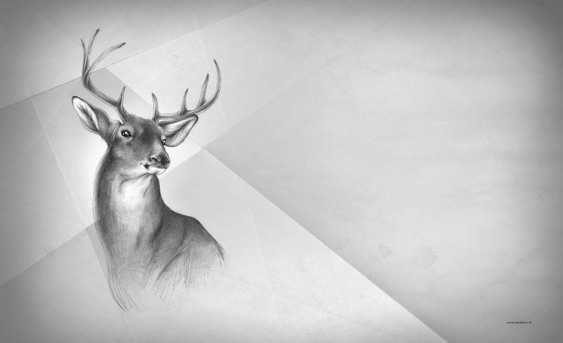 deer black white art painting animal wallpaper