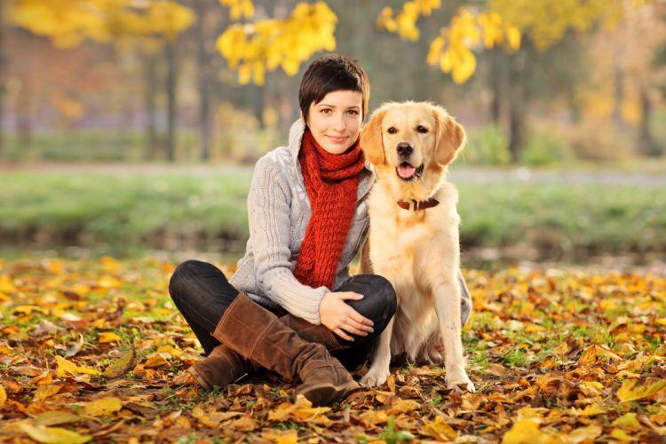 dog animal cute girl friend autumn wallpaper