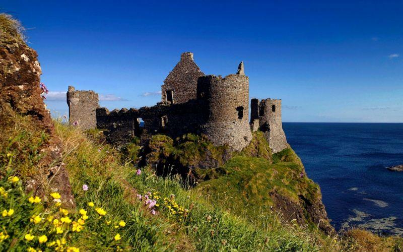 the castle sea flower wallpaper