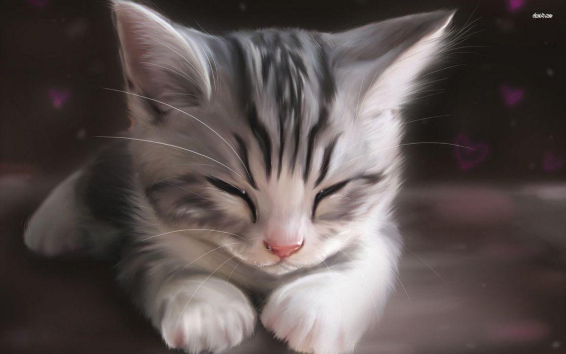 anime cat painting cute wallpaper