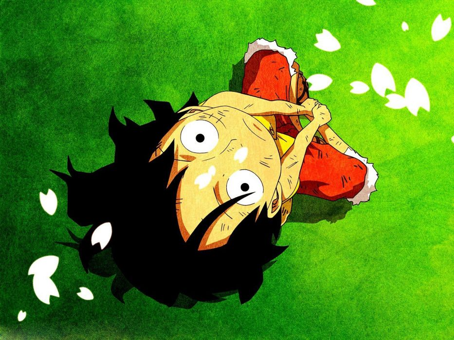 One Piece series anime characters petals wallpaper