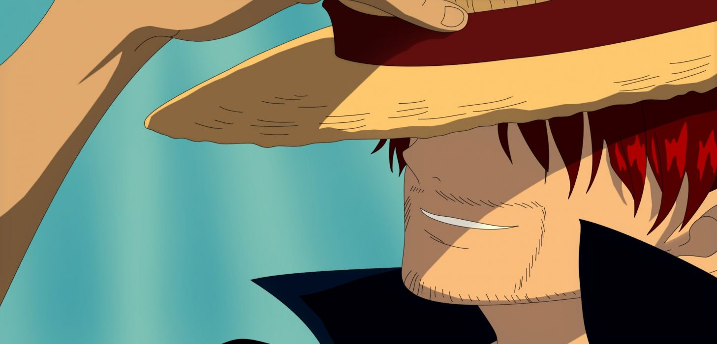 One Piece series anime characterss wallpaper