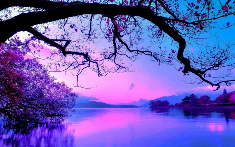 colors-landscapes-nature-trees-water- wallpaper