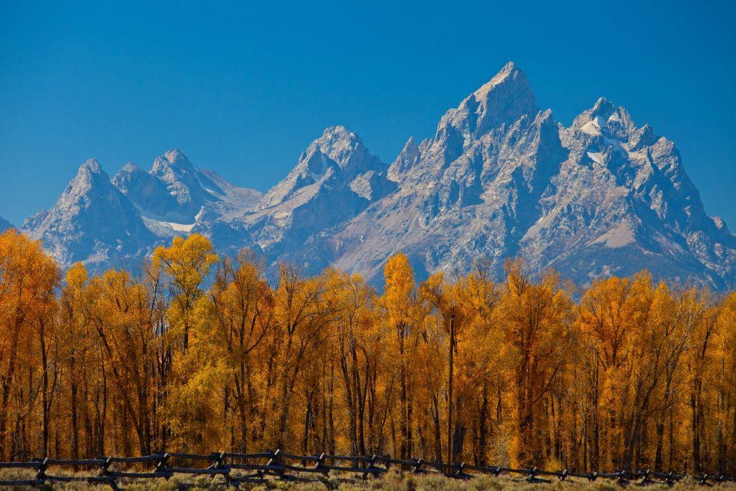 autumn-landscapes-nature-trees wallpaper