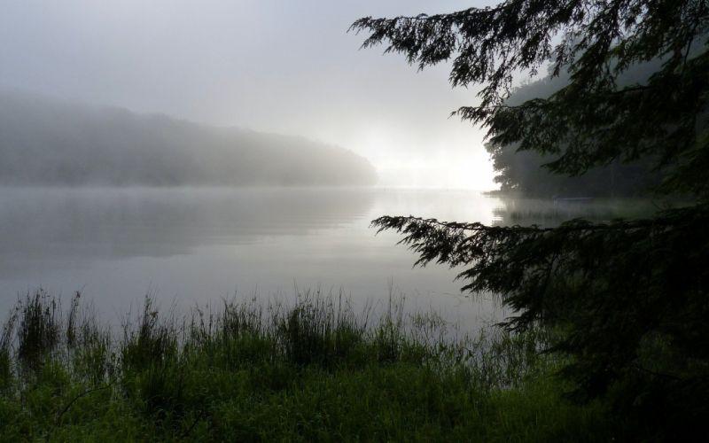foggy-river- wallpaper