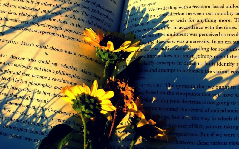 flowers-on-the-open-book wallpaper