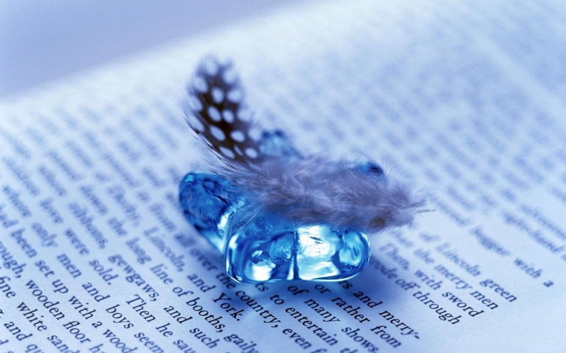 feather-and-gem-on-open-book wallpaper