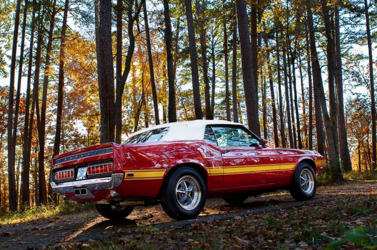 1969 Ford Mustang Shelby GT500 Convertible Muscle Classic Old Original Red USA 2048x1360-5 wallpaper