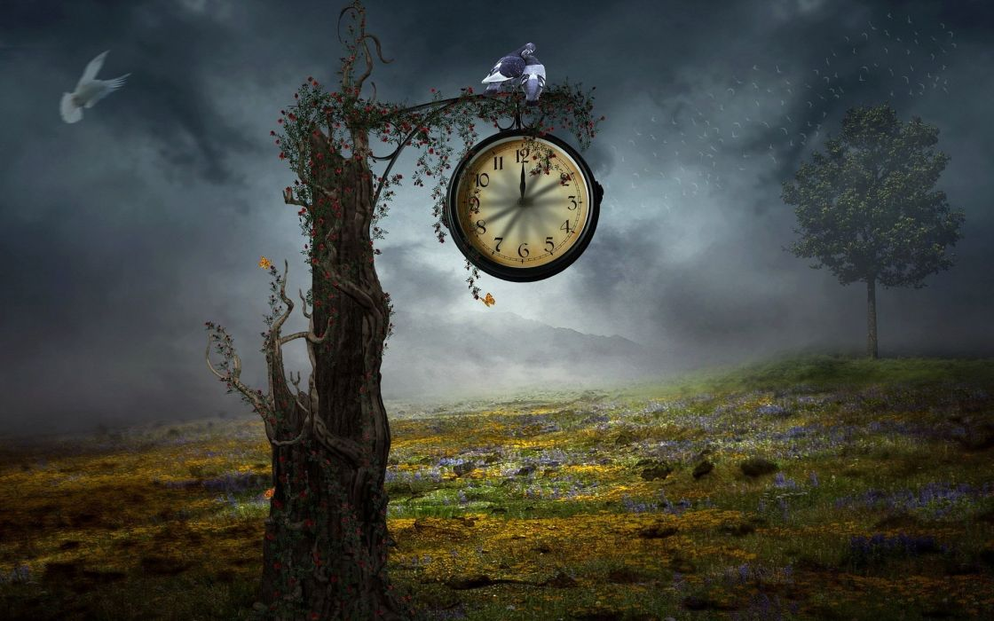 reloj arbol noche niebla wallpaper