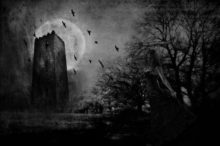 gothic girl bats moon wallpaper