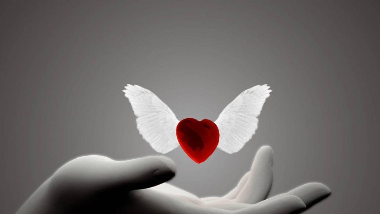 winged heart wallpaper
