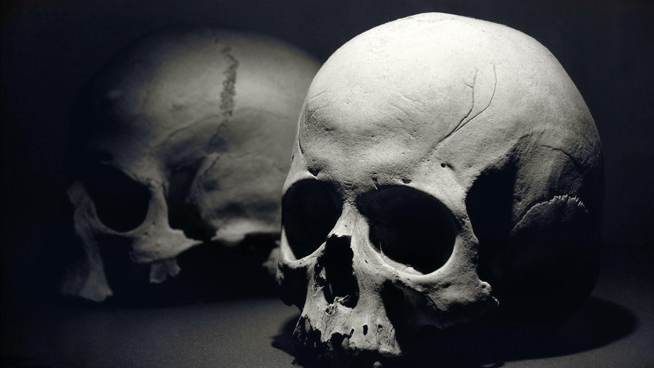 Dark Skull Evil Horror Skulls Art Artwork Skeleton D Wallpaper  2560x1440 694771 WallpaperUP