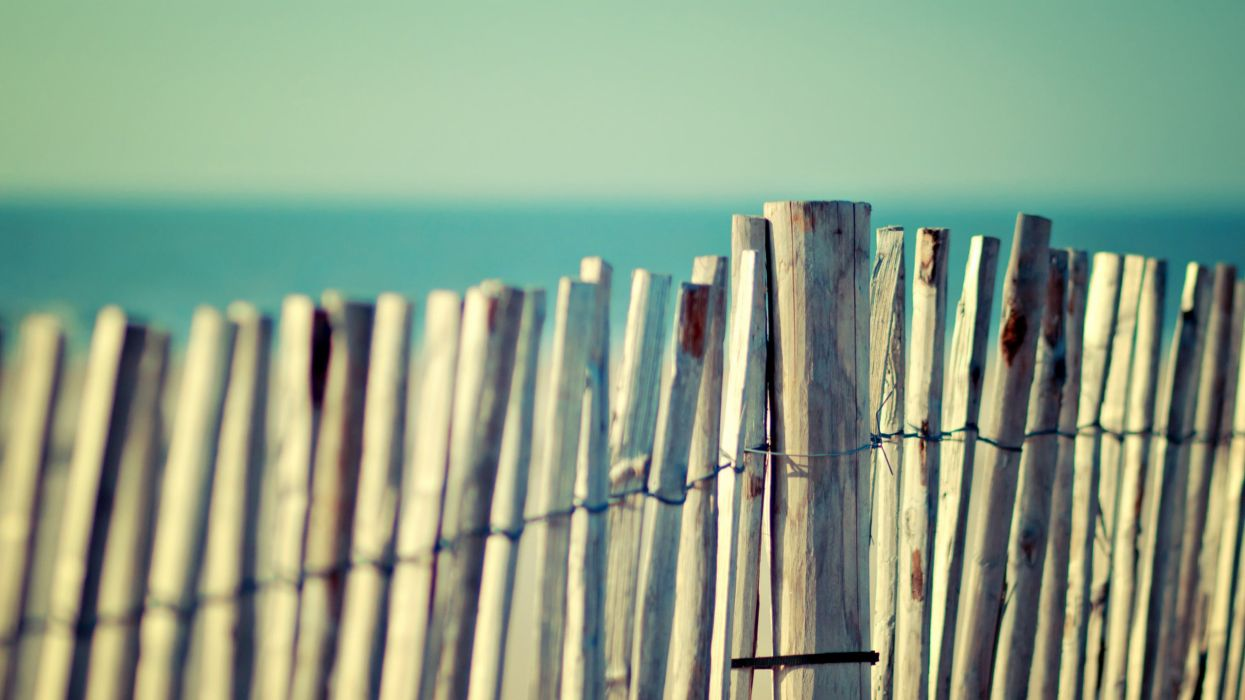 -summer-click-to-zoom-fence- wallpaper