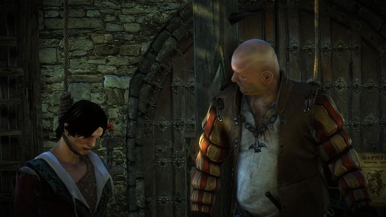 The Witcher 2 Assassins of Kings Elf Loredo Hanging wallpaper