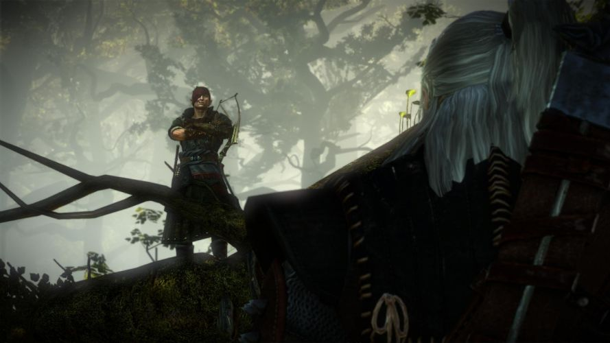 The Witcher 2 Assassins of Kings Iorweth Geralt Tree Bow wallpaper