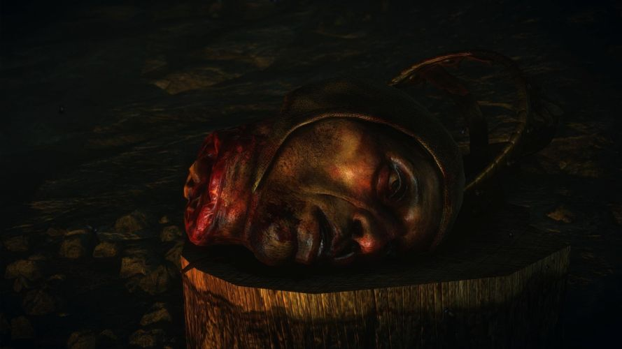 The Witcher 2 Assassins of Kings Cave Demawend Cut Head Crown wallpaper