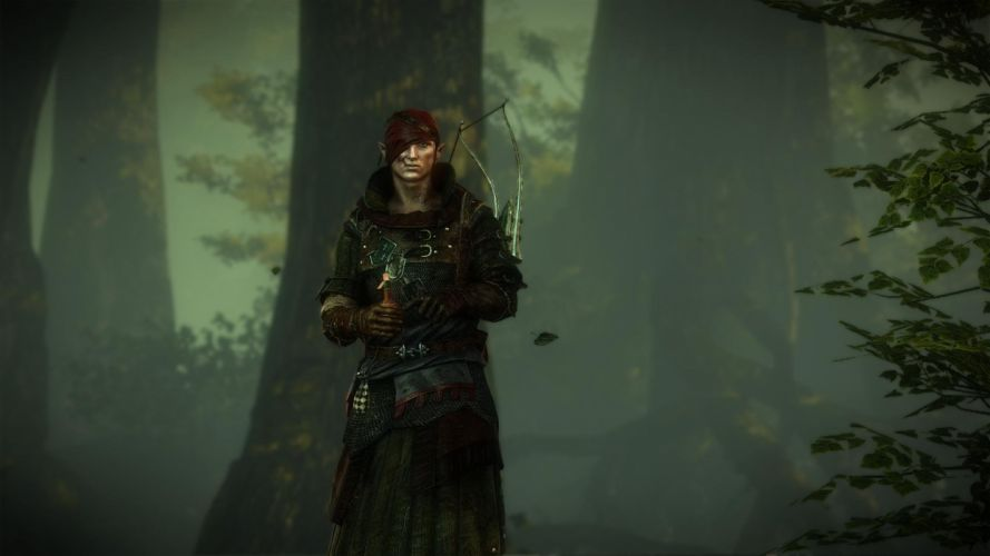The Witcher 2 Assassins of Kings Iorweth Forest Bow wallpaper