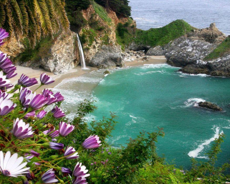 naturaleza paisaje playa acantilado flores wallpaper