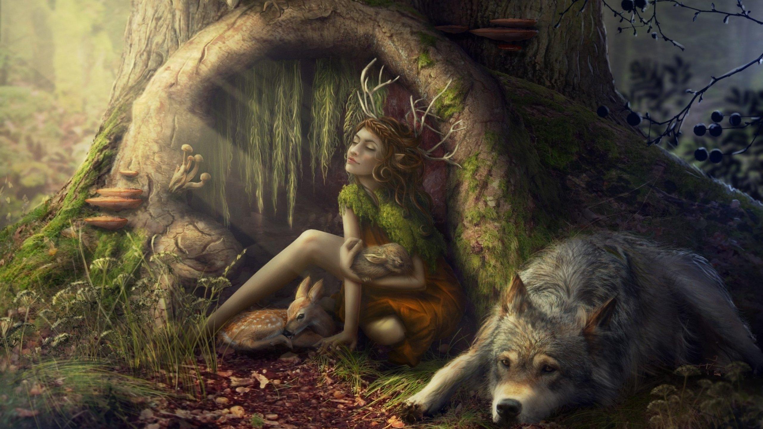 Art artwork fantasy magical forest original magic creature f wallpaper | 2560x1440 | 697754 | WallpaperUP