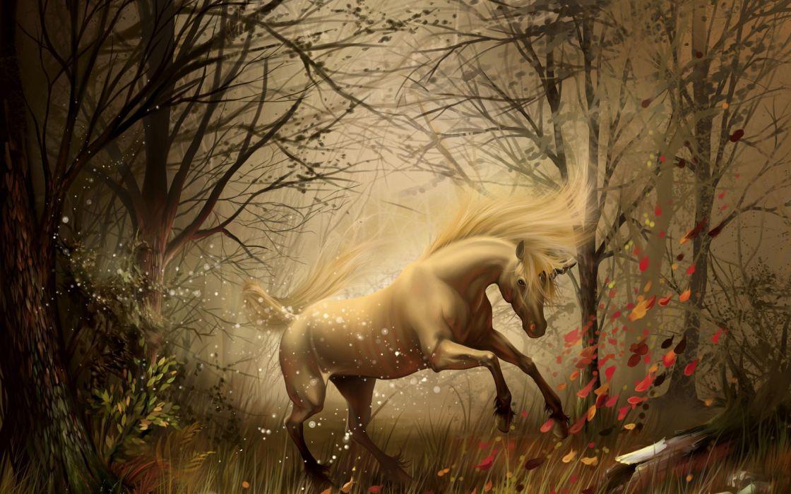 unicornio bosque fantasia wallpaper