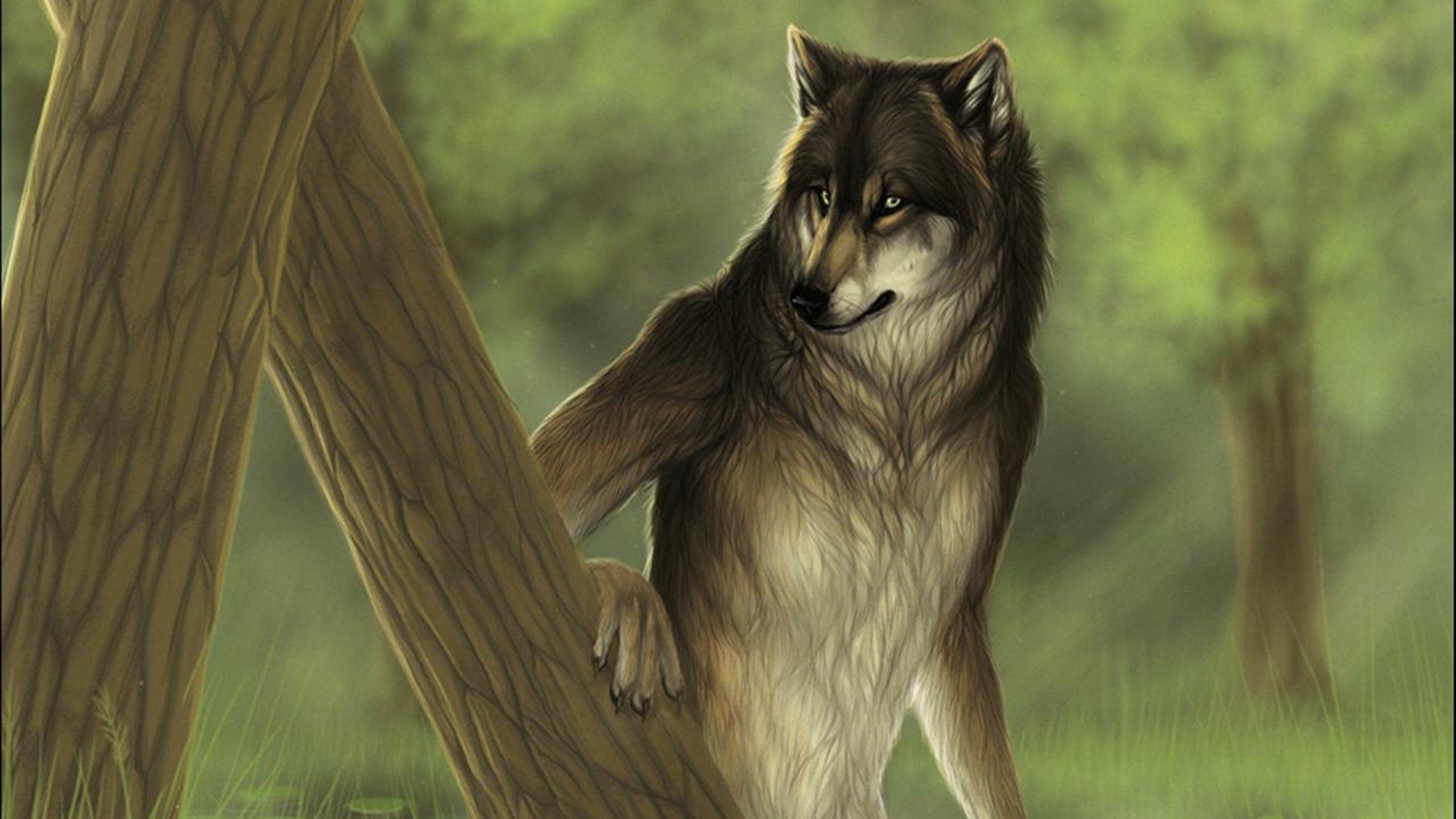 Фурри волки с людьми 2 фотография