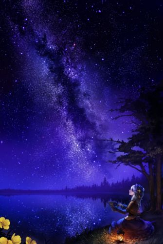 anime original night beautiful flower stars wallpaper
