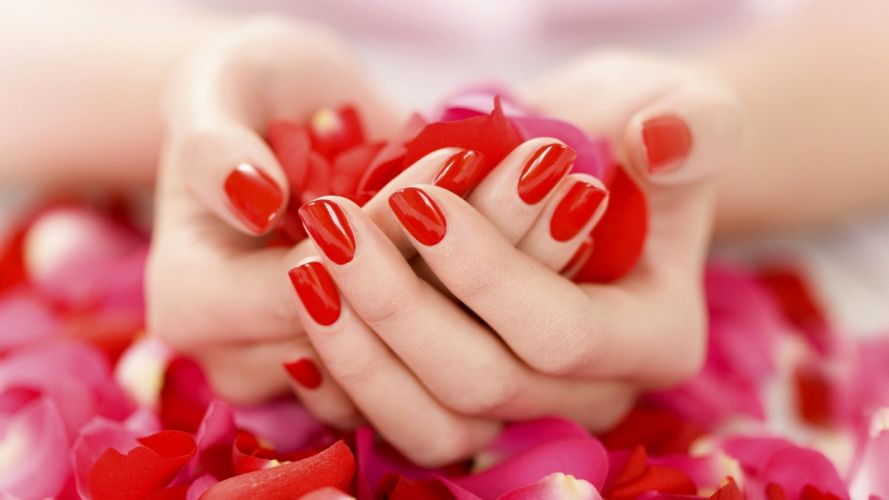 HANDS - holding red petals fingers nails manicure wallpaper