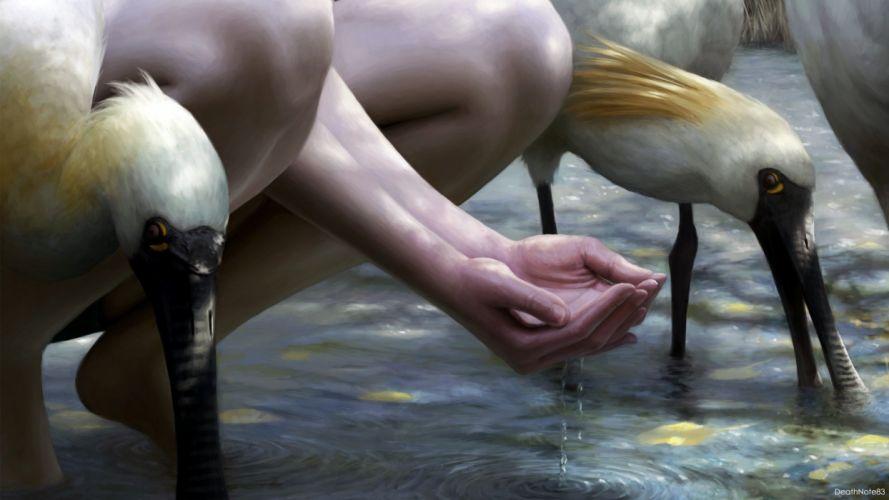 HANDS - photography painting birds water wallpaper