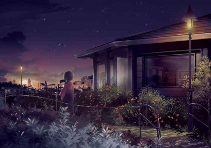 animal bird building buntooi leaves moon night original scenic sky stars wallpaper