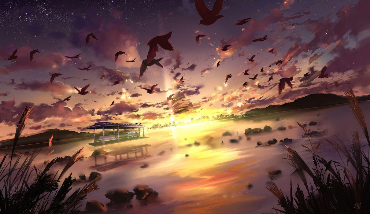 animal bird clouds landscape mikan 121 nobody original scenic sky sunset water wallpaper