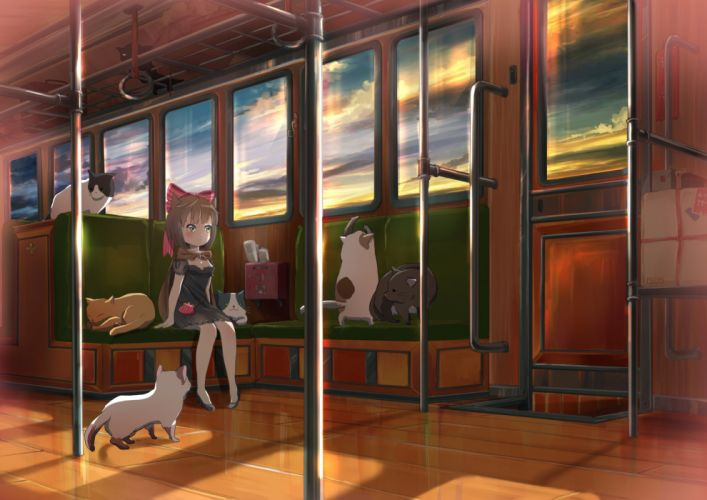 animal bow brown hair cape cat clouds green eyes original short hair sky sunset train wallpaper