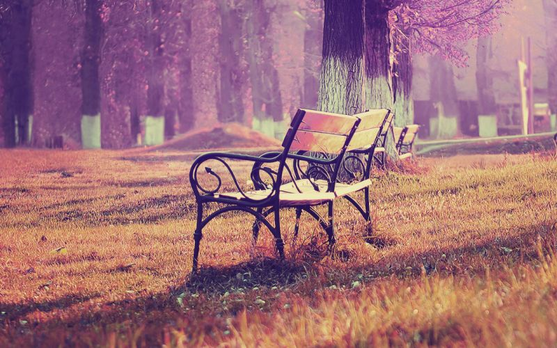 fall blue park chair lonely nature wallpaper