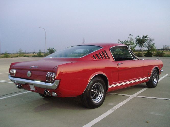 1966 Ford Mustang Fastback muscle classic f wallpaper