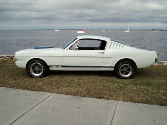 1965 Ford Musang GT350 Fastback muscle classic d wallpaper