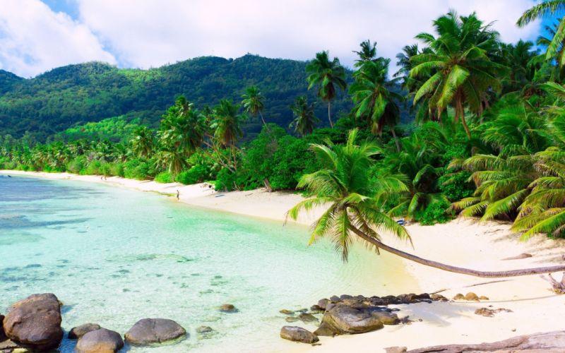 playa tropical caribe paisaje wallpaper