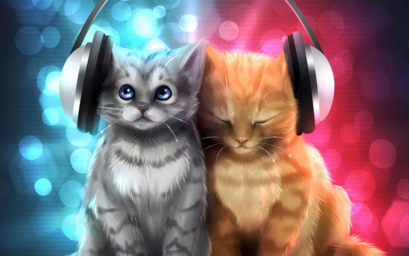 animal cat cats artwork art kitten headphones wallpaper