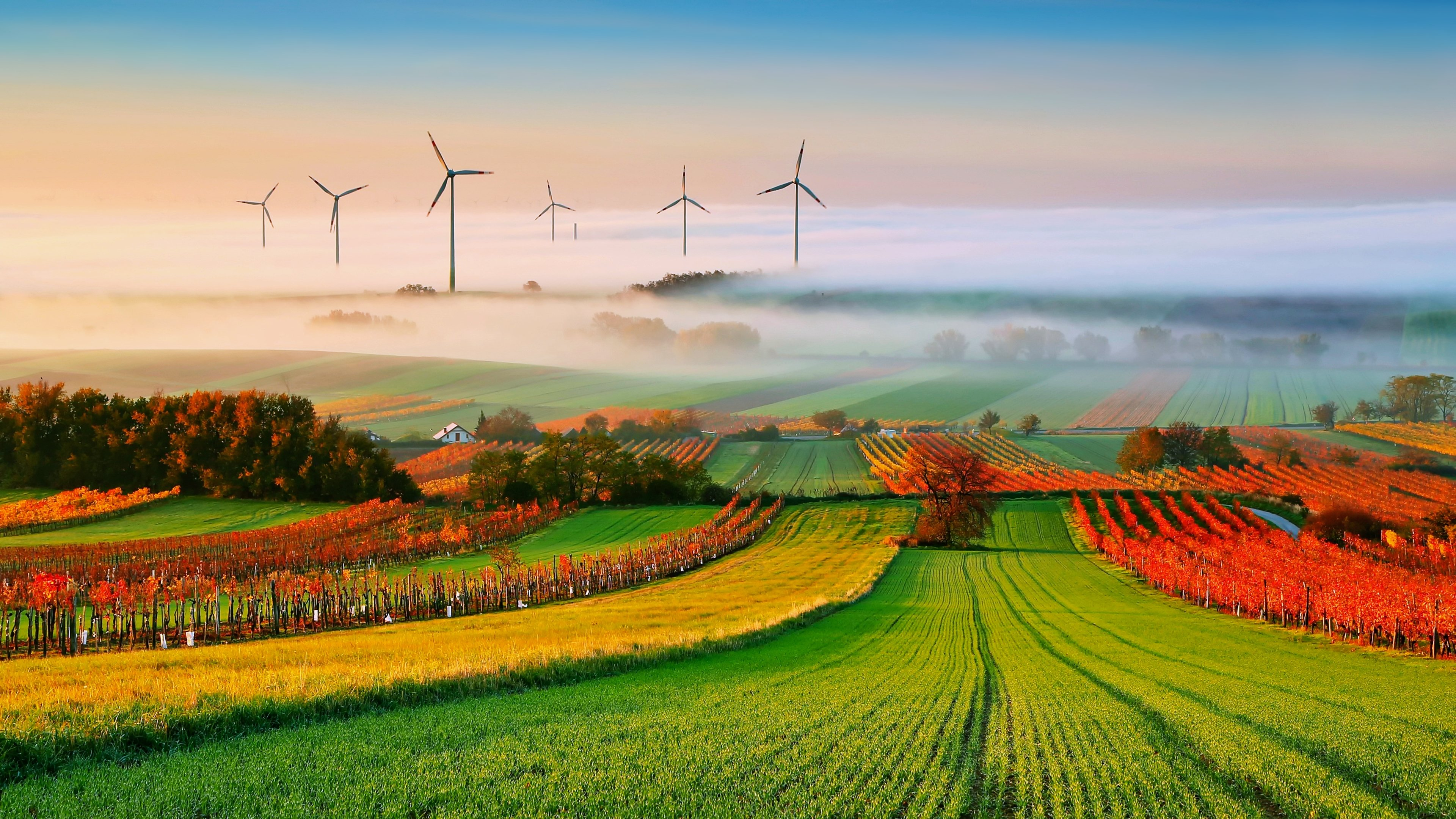 Agriculture Fog Earth Nature Field Landscape windmill ...