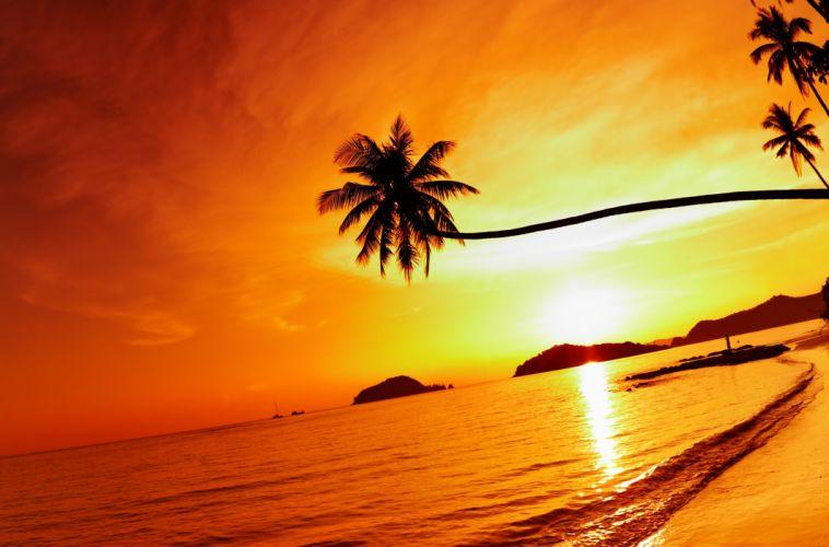 Thailand Beach Sea Sunset Sky Palm Tree wallpaper
