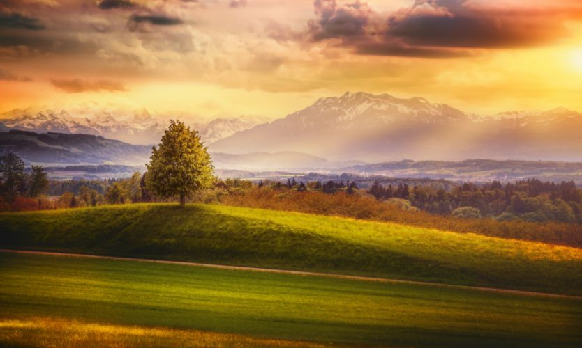 Tree Glow Sunset Alps Mountain Mountain Ridge Mountain Evening Landscape Alps Cloud Switzerland wallpaper