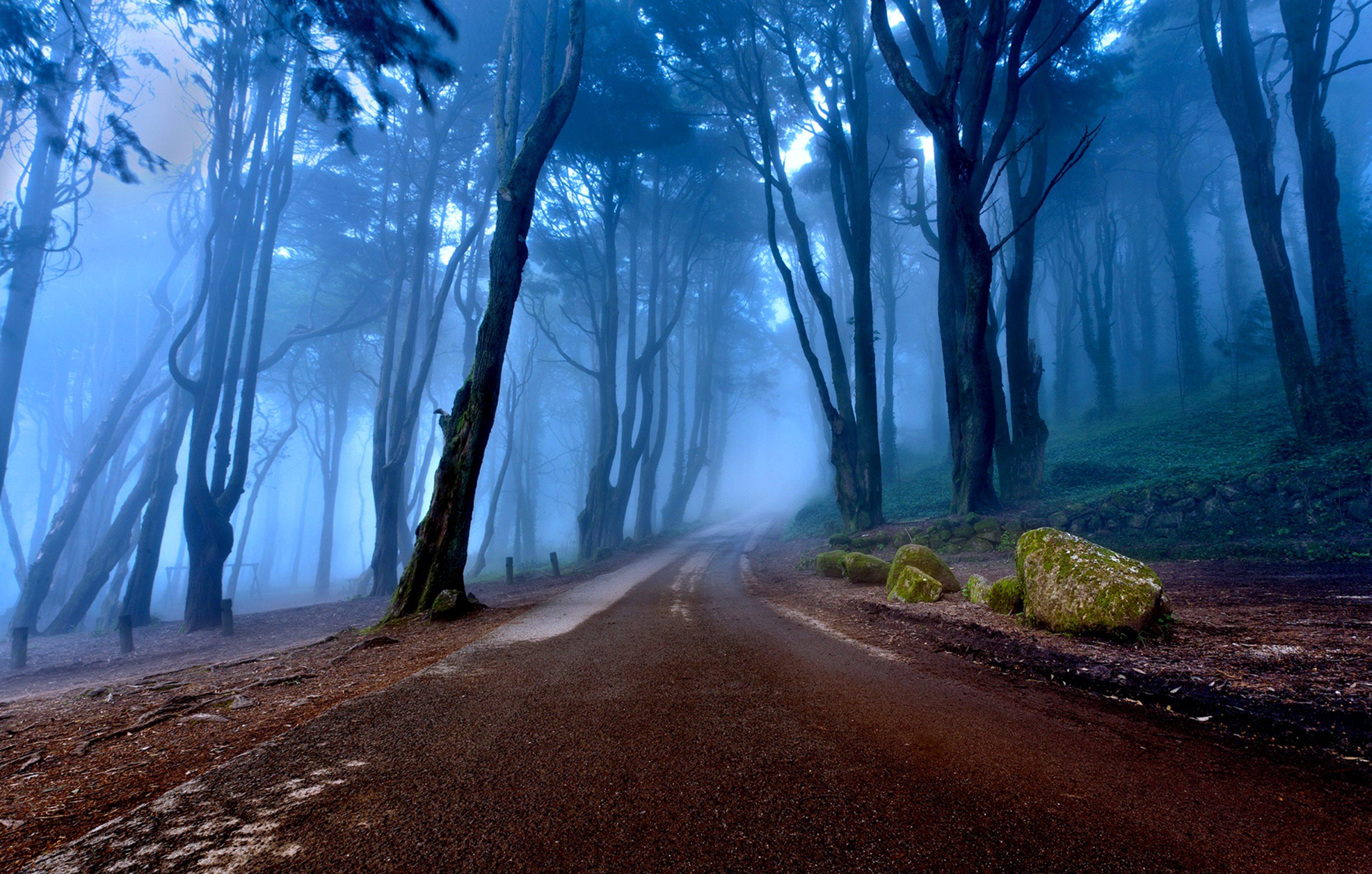 blue road nature photo - photo #16