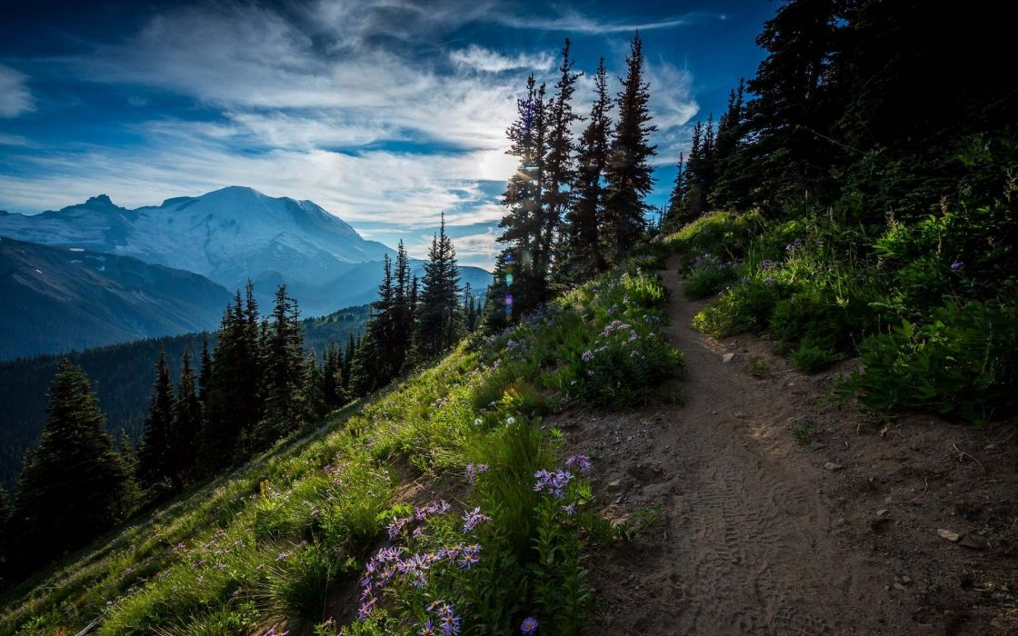 Clouds Path Moutain Tree Forest Landscape Nature wallpaper