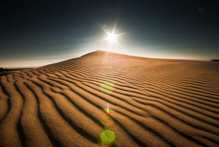 Coast Oregon Landscape Sun Organic Pattern Desert Dune Sand wallpaper