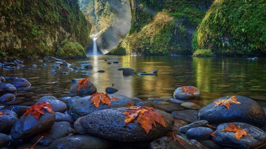 Leaf Moss Sunbeam Rock Landscape River Waterfall Nature wallpaper