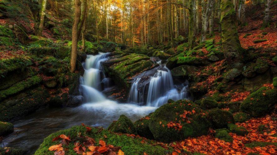 Nature Forest Fall Autumn Waterfall Leaf Rock autumn wallpaper