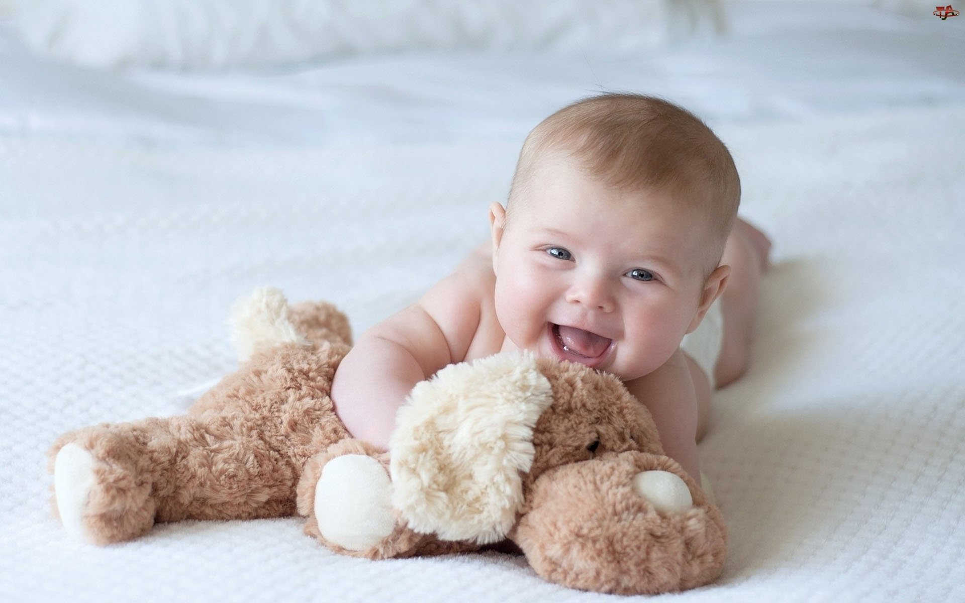 Baby Child Children Cute Little Babies Wallpaper 1920x1200