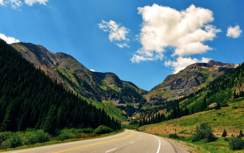 Forest Tree Mountain Nature Landscape Road wallpaper