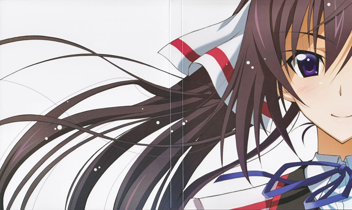 Infinite Stratos Houki Shinonono wallpaper